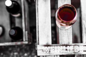 Weingut Kiefer-Seufert 2